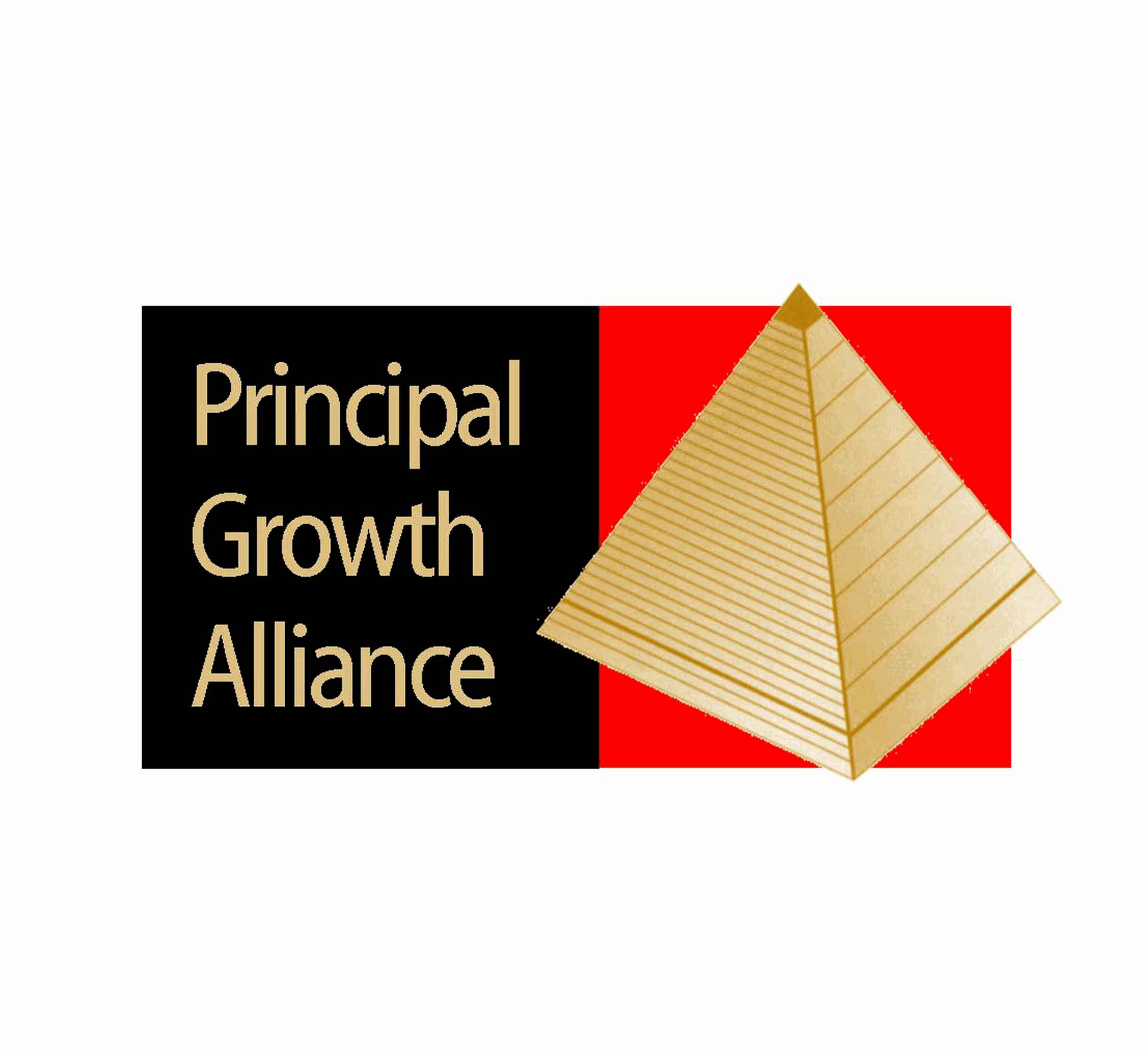 Principal Growth Alliance, logo by New Paradigm graphic design, Santa Rosa, CA